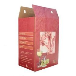 Carton box for 5L flask