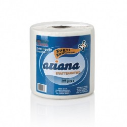 Kitchen roll Ariana Maxi 600gr